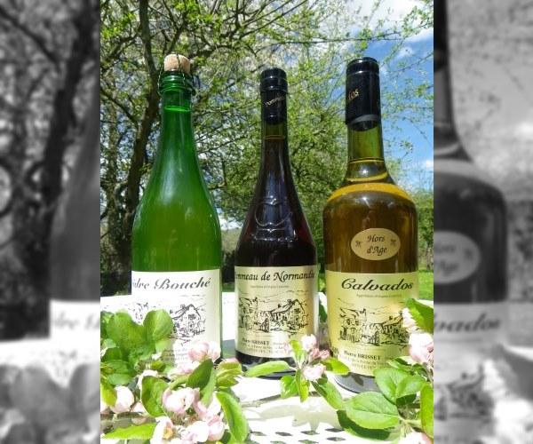 Alcools et apéritifs faits maison à la Ferme du Vey de Clécy